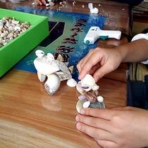 *クラフト体験/ビーチで拾った貝で作る貝細工体験はお子様にも人気♪