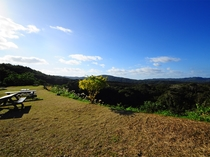 【景観】敷地からのやんばるの自然豊かな景色②