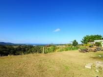 【景観】敷地からのやんばるの自然豊かな景色③
