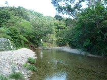 源河川の情景
