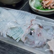 *【男命イカのお造り】半透明のイカは新鮮な証!豪快に姿造りで召し上がれ♪