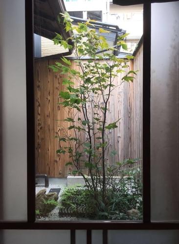 ガラス越しの坪庭