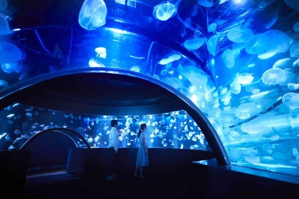 【夏旅セール】【素泊まり】☆梅小路エリアを散策!京都水族館チケット付きプラン♪大浴場も利用OK!