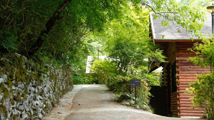 【ヒュッテの小径】坂道が続きますので、足元にご注意くださいませ。