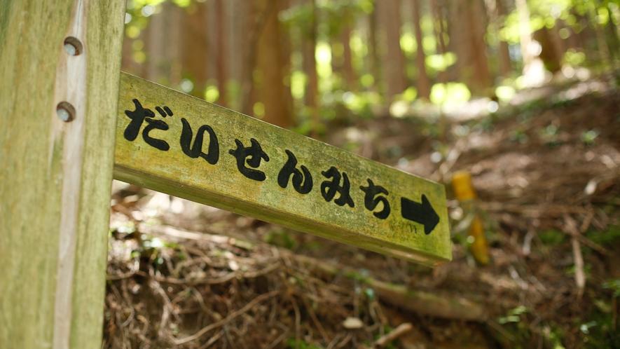 """大川山・標高1042mを目指す""""だいせんみち"""""""