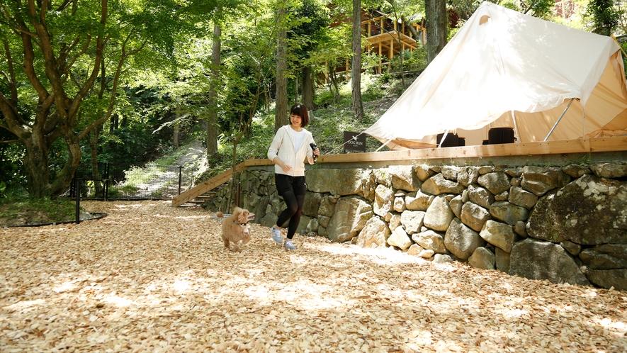 木のチップを敷き詰めたドッグラン。里山の自然に寛ぐ愛犬との休日をお過ごしください。