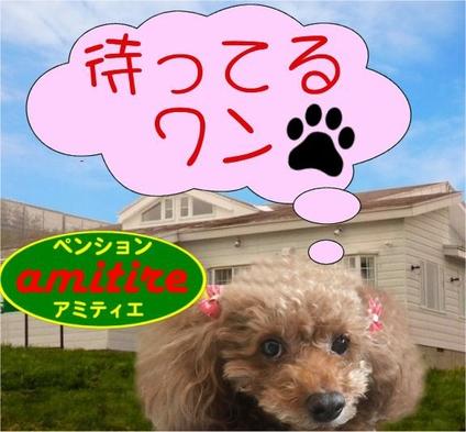 【ペット同伴可能】天元台高原でのんびり お一人様も対応可能です!