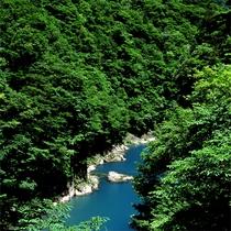 【夏】 新緑の抱返り渓谷