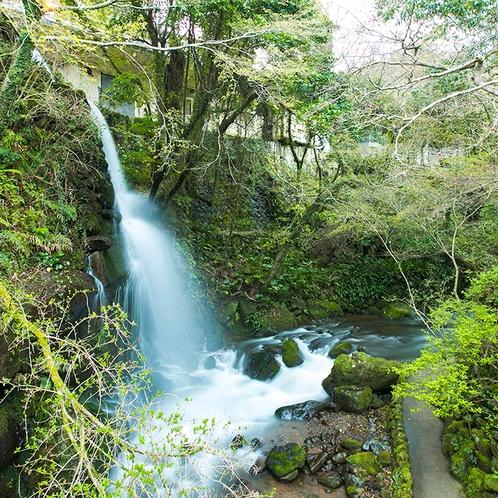 万葉公園の滝
