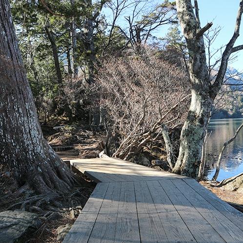 *[湯ノ湖遊歩道]当館からすぐの場所にあり、気軽に散策できるお散歩コース。