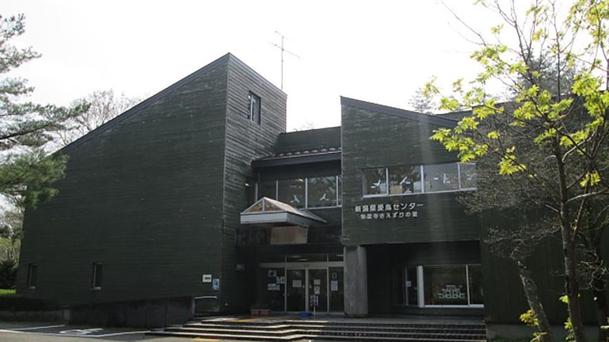 *[紫雲寺記念公園/新潟県愛鳥センター]野鳥のジオラマ、マルチスライド、様々な特別展もございます
