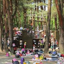 *[紫雲寺記念公園/トリム広場]子どもから大人まで楽しめるアスレチックもございます