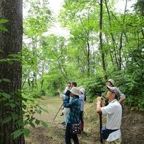 *[紫雲寺記念公園/探鳥路]散策にはちょうどよい起伏があり森林浴にピッタリ♪