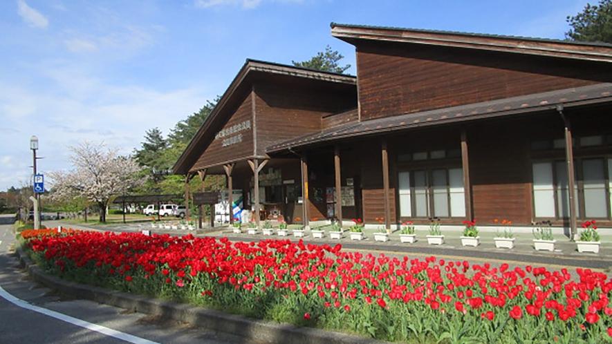 *[紫雲寺記念公園/公園事務所]公園のご案内はこちらへどうぞ!