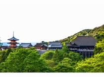 清水寺1 京都まで当館すぐのバス停より直通高速バス約45分 (1時間に1本運行)