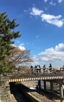 嵐山 晴天