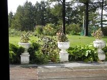 食堂からの庭