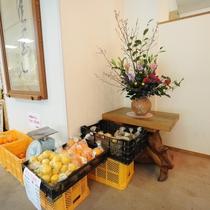 【地元野菜】地元で取れた食材も販売しております