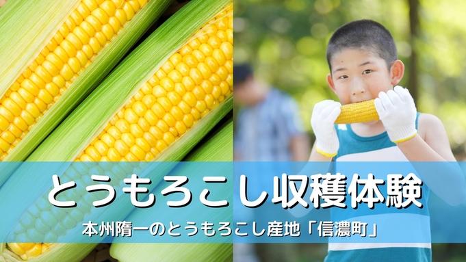 【夏休み体験!】とうもろこし収穫チャレンジ&焼きもろこし1本付♪生でも甘い信濃の恵み♪(2食付)