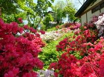 付近散策~茶臼山公園~