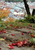 近隣散策名所「茶臼山公園」