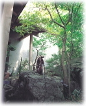 玄関脇坪庭
