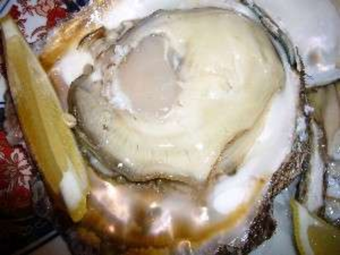 生の岩ガキです、夏に夕食でお出ししています。(一例)