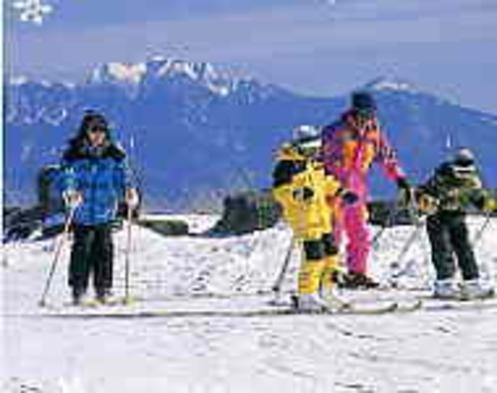 ★【さき楽】【雪遊び】【お先でスノ。】スキー・スノボ【ポイント2倍】1泊2食付★