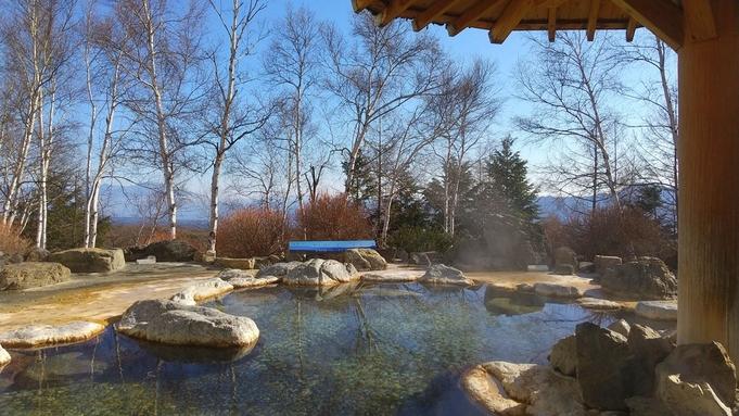 【基本プラン】長野県産食材のビュッフェ&シャトレーゼスイーツと希少な泉質の温泉満喫/ホテルビュッフェ