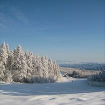 広い空と自然に囲まれ開放感のある滑りをお楽しみください
