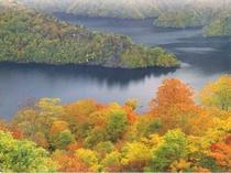 紅葉の田子倉湖