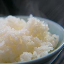 【人吉球磨産ひのひかり】人吉球磨は寒暖の差が厳しいため、粘り強く甘さのあるおいしいお米ができます。