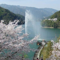 *市房ダムの桜