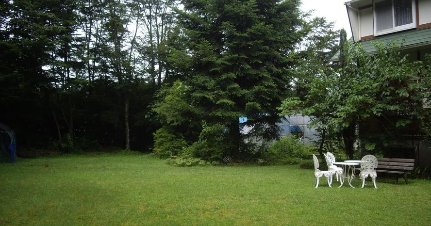 庭、家の前、芝生