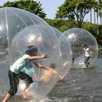 グランパル(水ボール