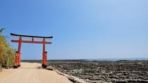 【観光地】青島②