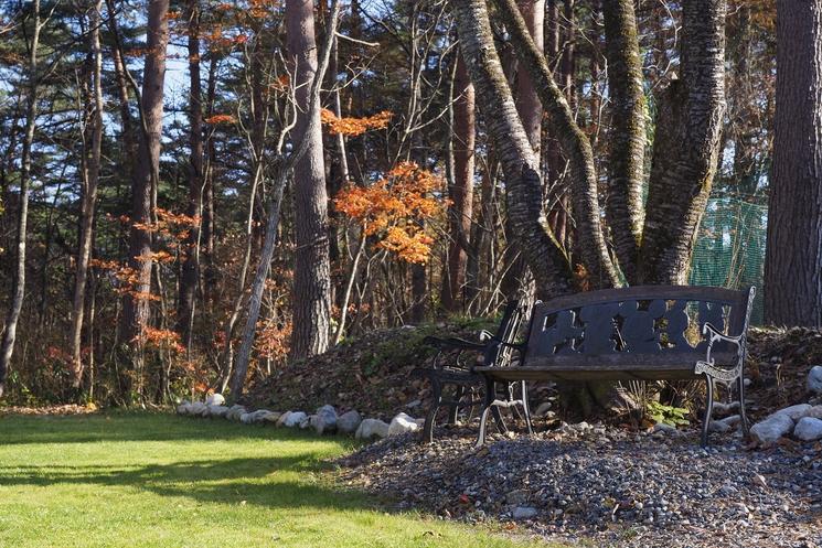 芝生の庭とベンチ