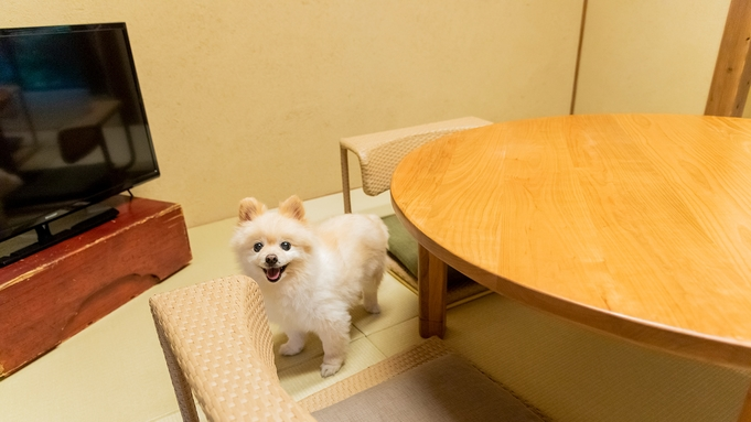 【素泊まり】季節にぴったりのフランスナチュラルワインを楽しむプラン 愛犬・愛猫と泊まれる京町家