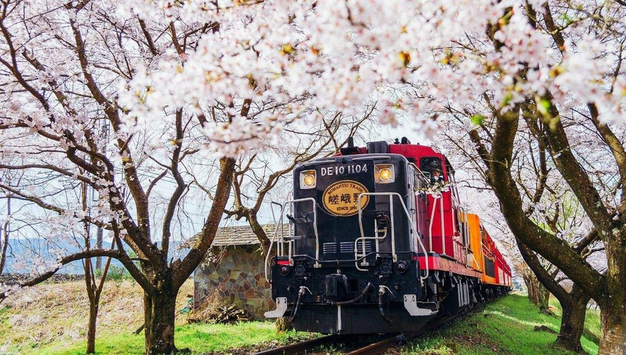 桜の時にトロッコ列車に乗っていかがでしょうか
