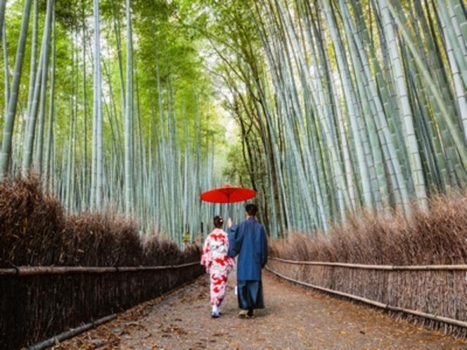 竹林の道で散策♪