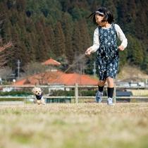 愛犬とおさんぽ3