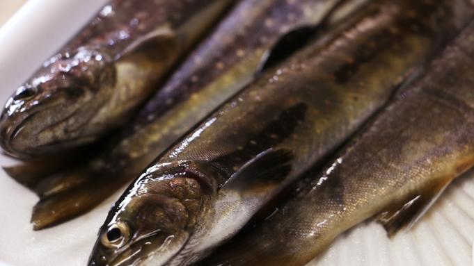 【釣り券付き】渓流釣りの里で魚釣り&新鮮な岩魚料理と奥会津郷土料理を食べつくす旅♪《特典付☆2食付》