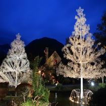 【冬】ガラスの森美術館クリスタルガラスのツリー