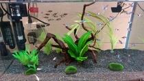『Kuretake-Aquarium in Nayabashi』