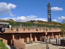 東山動植物園 ゾージアム2階風景