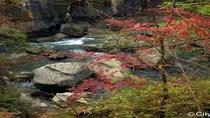 ◆≪磊々峡≫峡谷沿いに遊歩道が設けられており、間近で渓谷美を観賞することができます♪