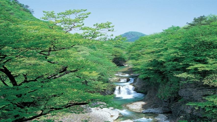◆≪鳳鳴四十八滝≫滝から響く水音が「鳳凰」の鳴き声に似ていることから名付けられたと言われています。