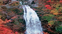 ◆≪秋保大滝≫幅6m落差55mの文字通りの大滝で、日本三名瀑の一つです。