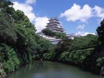 姫路城、夏