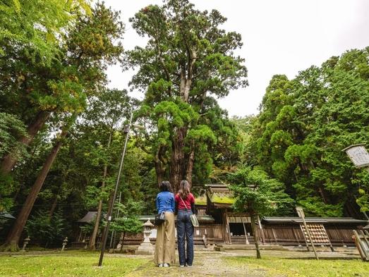【素泊まり】「海のある奈良」小浜で街並みや寺社仏閣を巡る!電動サイクリング付きプラン
